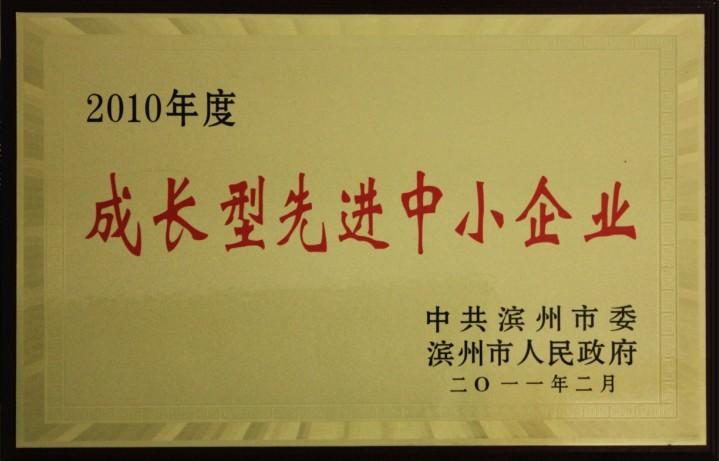 2010年滨州市成长型先进中小企业