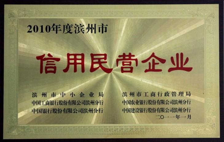 2010年滨州市信用民营企业