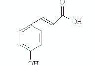对羟基肉桂酸